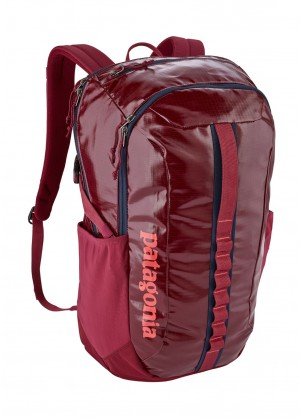 Patagonia Black Hole Pack 30L - WinterWomen.com
