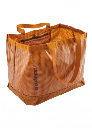 Patagonia Lightweight Black Hole Gear Tote - WinterWomen.com