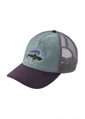 Patagonia Womens Fitz Roy Bison Layback Trucker Hat - WinterWomen.com